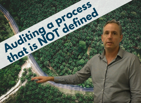 How to audit a process that is not defined