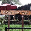 hana_harvest_maui.jpeg