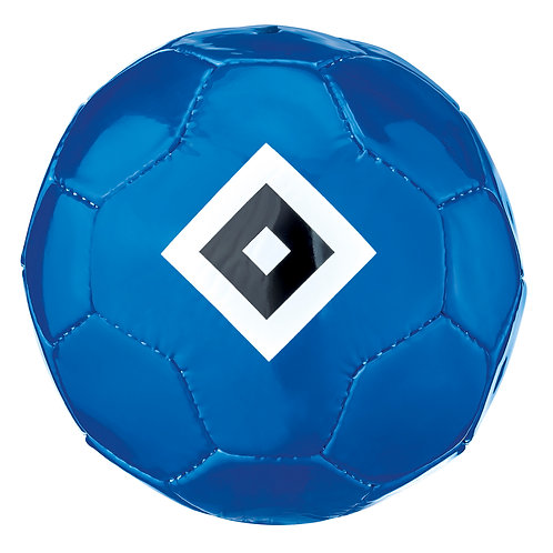 HSVMiniball Raute