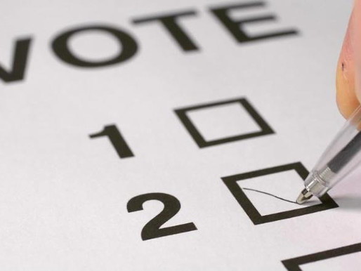 On the Ballot: Illinois General Primary Election