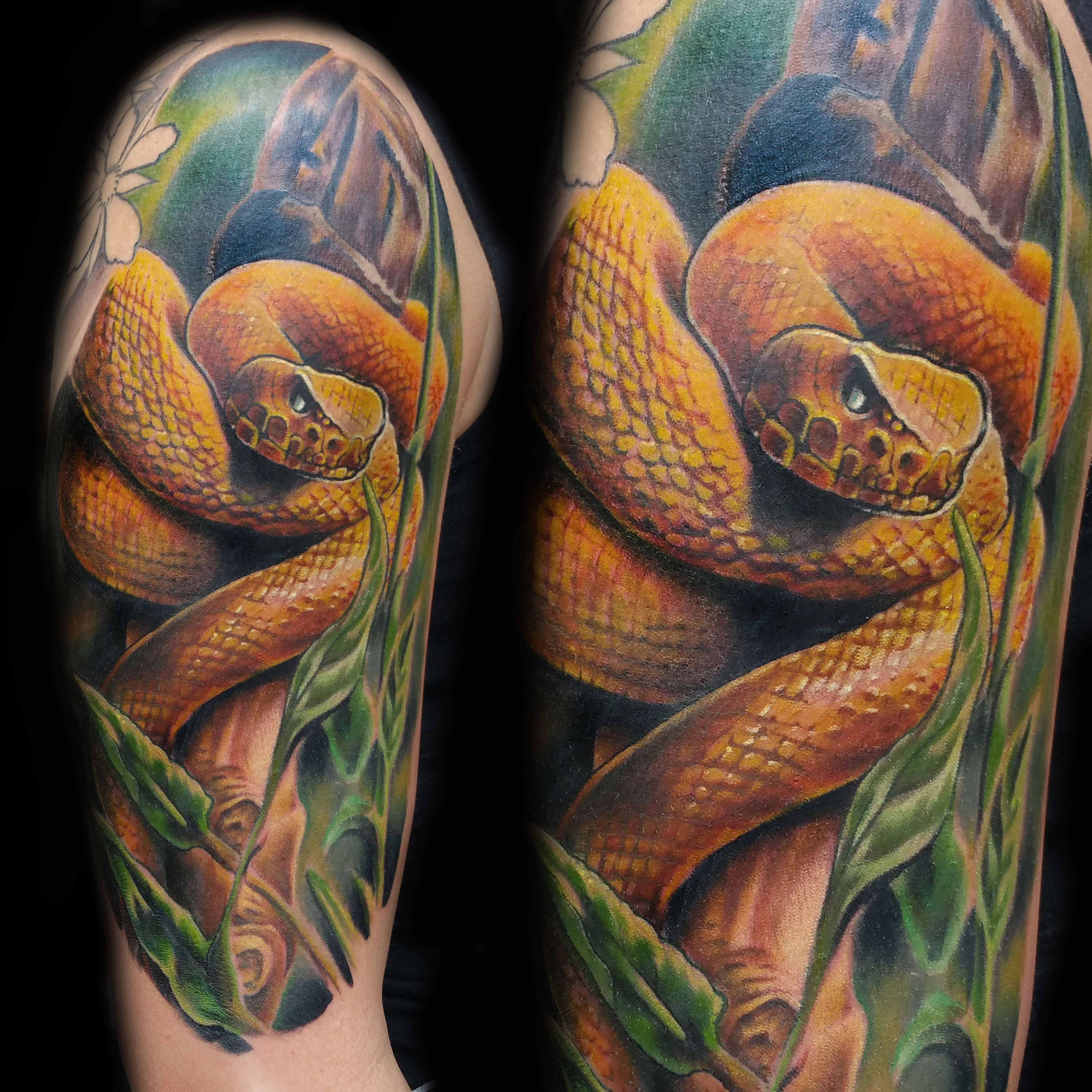 23 yellow viper snake color tattoo oscar