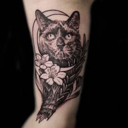 cat tattoo moon