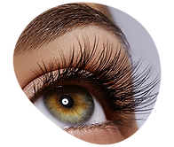 745x660shapes-Eyes.png