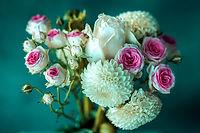 flower-3285202_1280.jpg