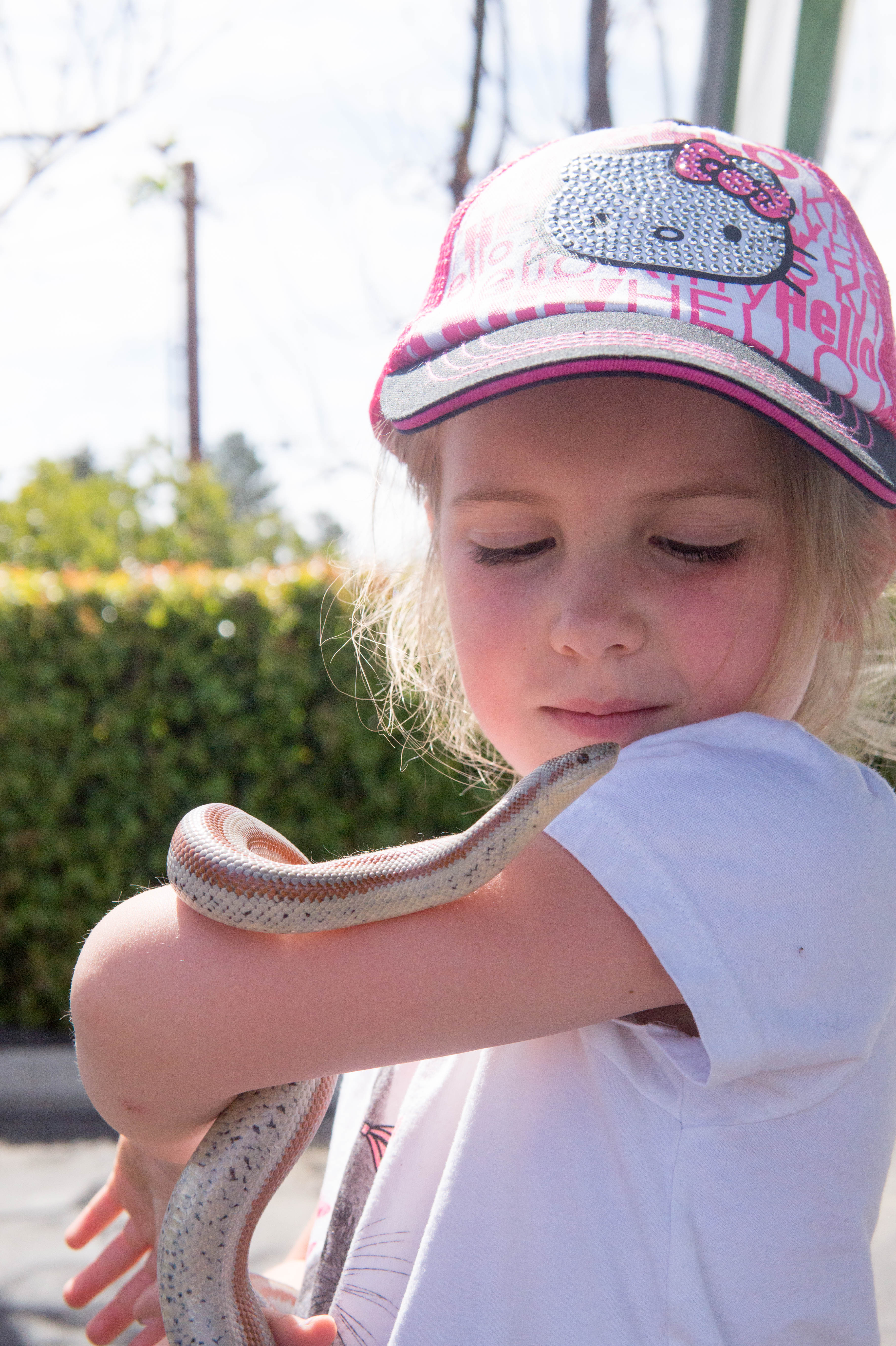 Fun w/ Snakes 2