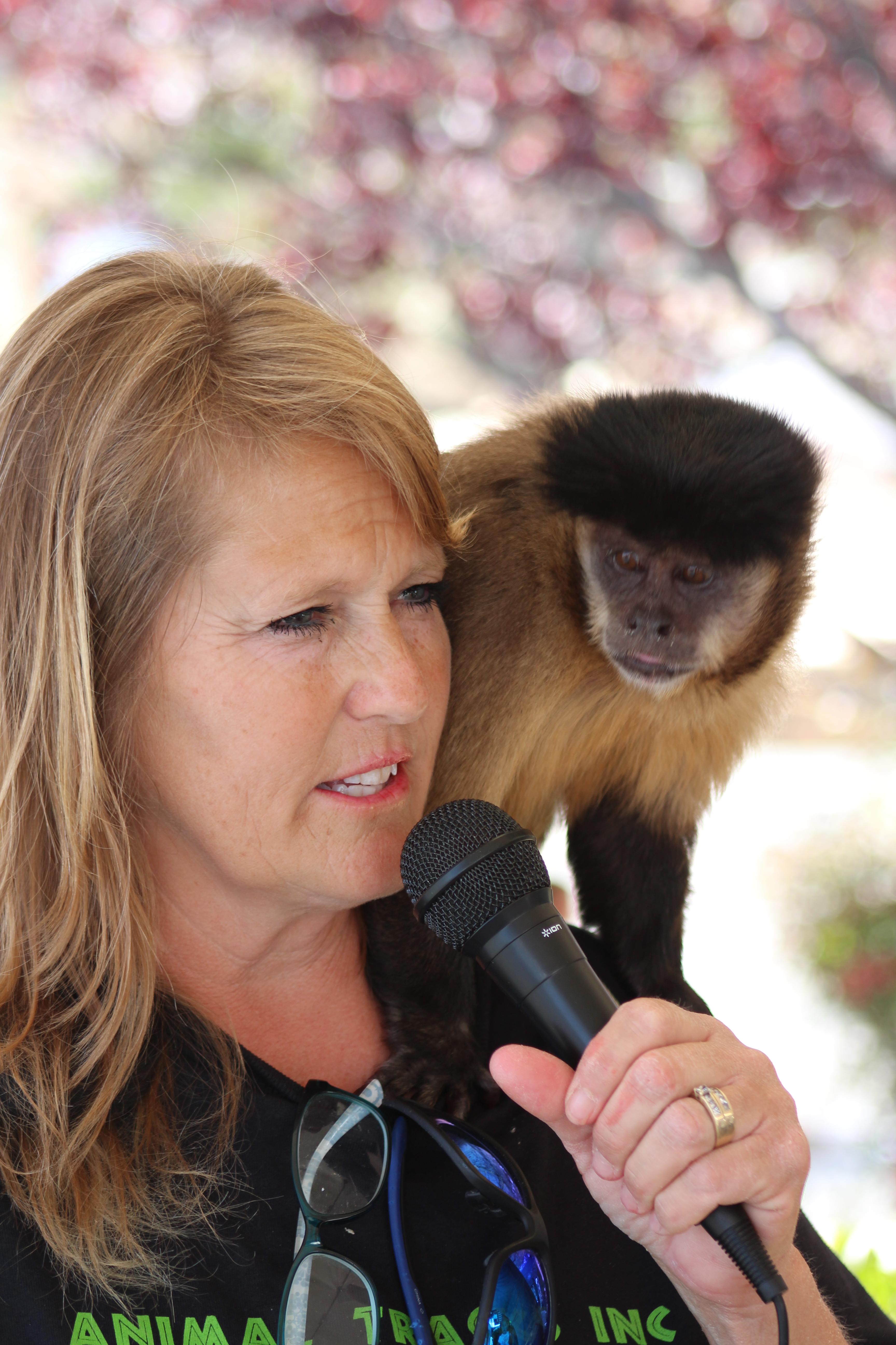 Stacey w/ Capuchin Monkey