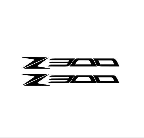 Z 300