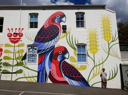 Rozelle Public School Australian Native Birds by Geebs