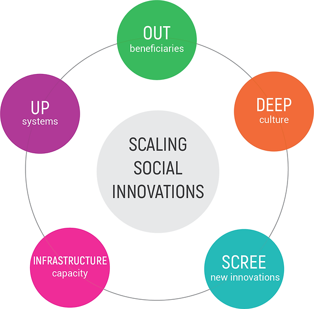 Scaling Social Innovation-01.png