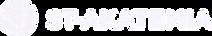 Timehouse asiakas ST-Akatemia