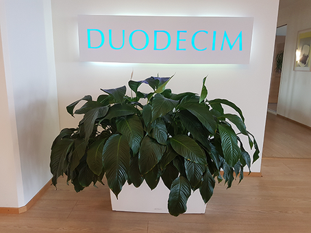 Duodecim & Timehouse begin their publishing partnership