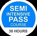 course-semi-intensive-pass.webp