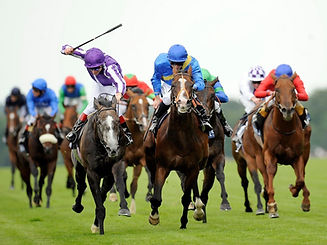 Horse_Racing_.jpg