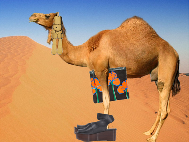 The camel is feeling modern today