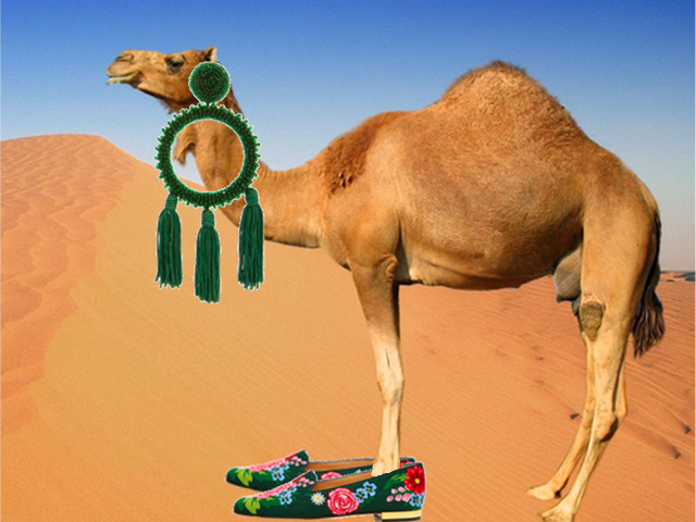 Hump Day accessory camel