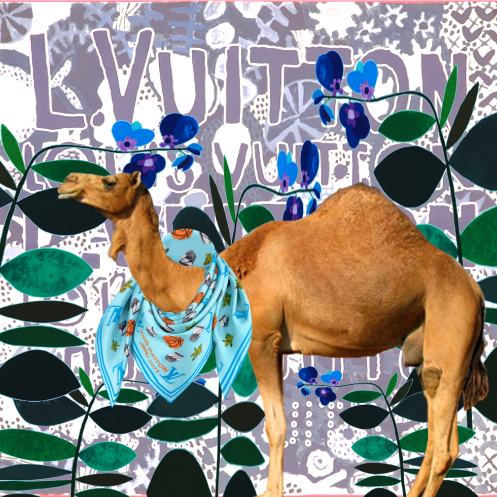 The Camel loves a good artist + designer collab