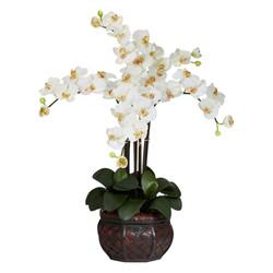 Nearly-Natural-Phalaenopsis.jpg