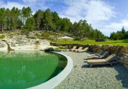 piscine_taillé