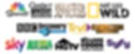 international logo cluster.png