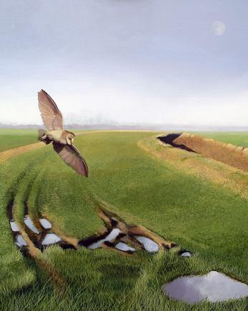 Wingfield  -                   Sold acrylic on canvas 63x53 cm