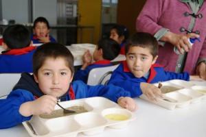 Alarmantes niveles de sobrepeso y obesidad en niños y jóvenes de Queilen