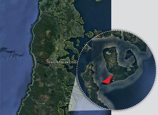 Decretan cierre preventivo por toxina amnésica de mariscos en Quellón
