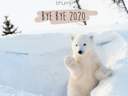 BYE BYE 2020...