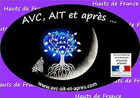 Logo Asso - RIG - Hauts de France.jpg