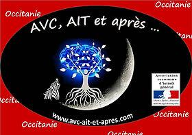 Logo Asso - RIG - Occitanie.jpg