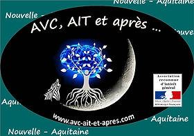 Logo Asso - RIG - Nouvelle-Aquitaine.jpg