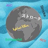 10-_permis_international_edited_edited.j