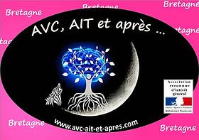 Logo BFC et RIG - Bretagne.jpg