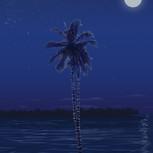 Miami Christmas - Night
