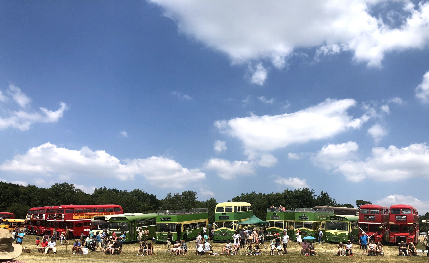 Buses at Wiston Steam Rally