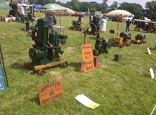 Wiston 2013 By Steven whittingstallWisto