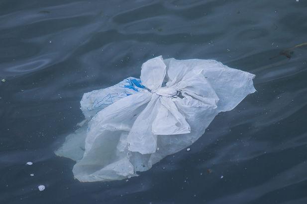 brian-yurasits-plastic-bag.jpg