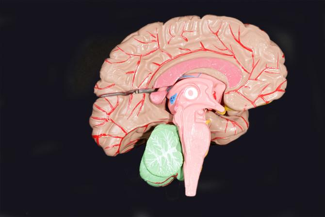 Imagem da Retina para Detecção Precoce da Doença de Alzheimer