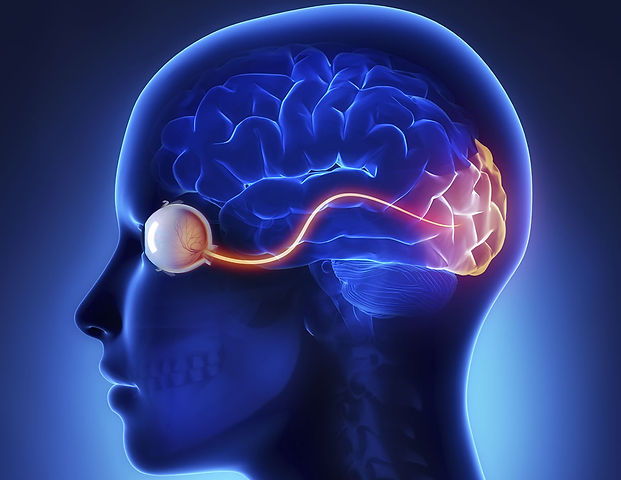 neuro-ophthalmology 3.jpg