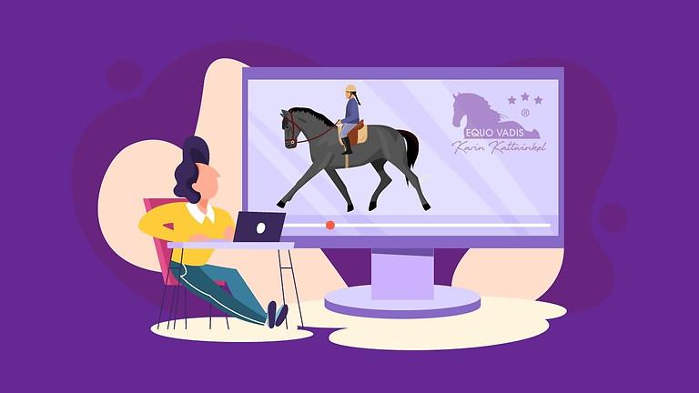 """Modul 14 - Web-I-nah """"Gutes Reiten hält mein Pferd gesund"""""""