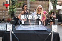 DISARONNO Contemporary Terrace_Maison Mercer-Maison Mercer-049