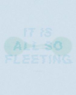 IT IS ALL SO FLEETING
