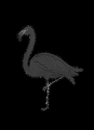 TBF - Interiors - Solo Flamingo.png