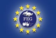 Logo MEP-am-FEG.png