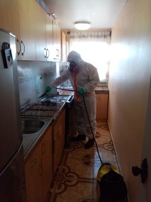 Limpieza de Cocina con Vapor, 06/06/2020. Viña del Mar