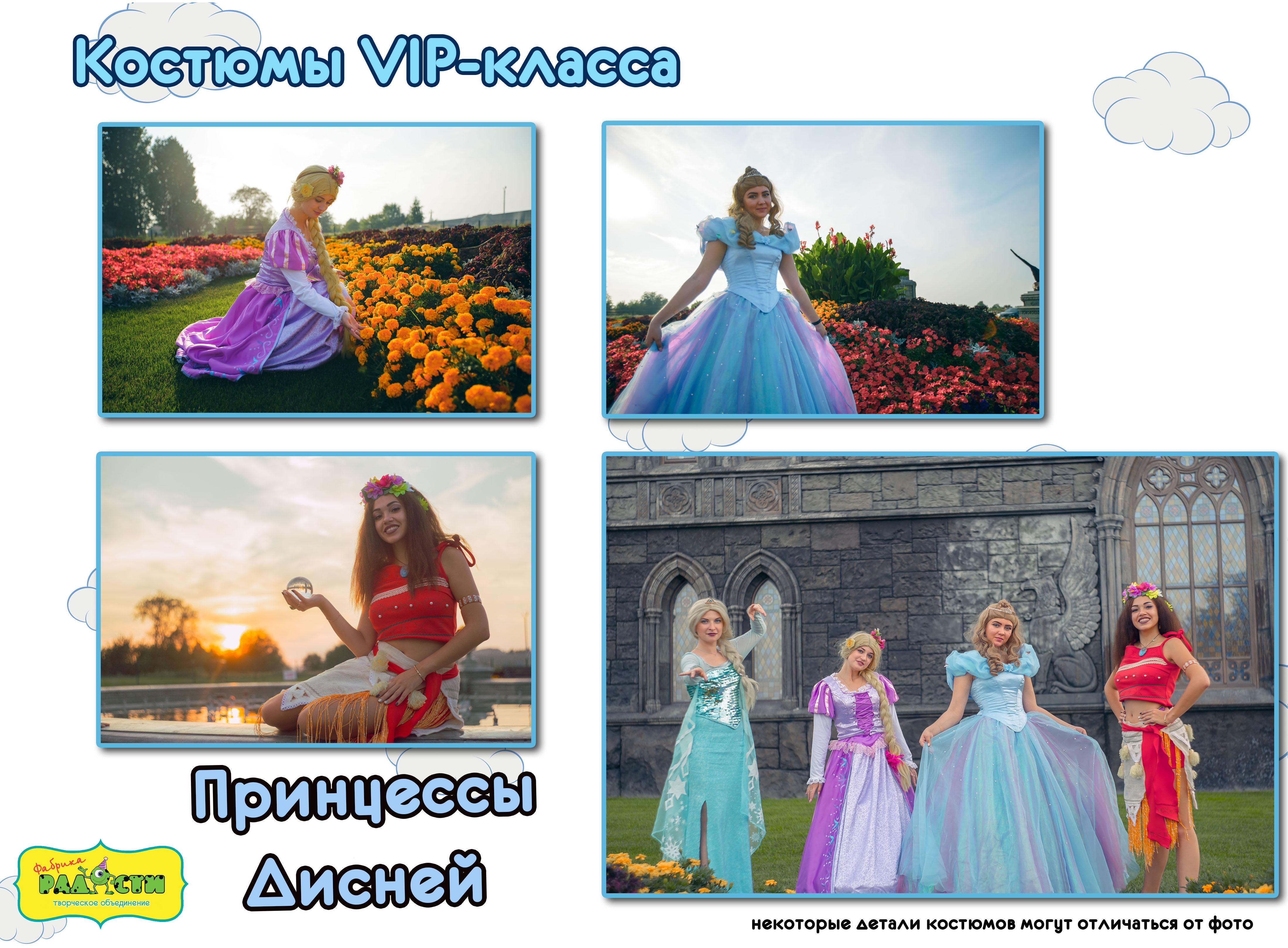 Принцессы Дисней
