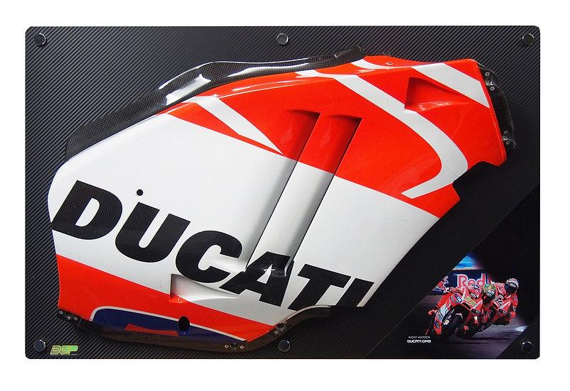 Nicky Hayden GP13 side panel