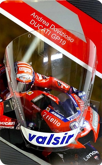 Ducati GP19 screen