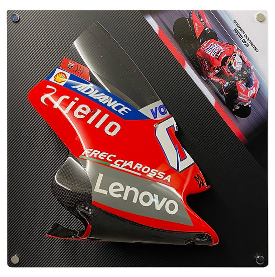 Dovizioso GP20front fairing section