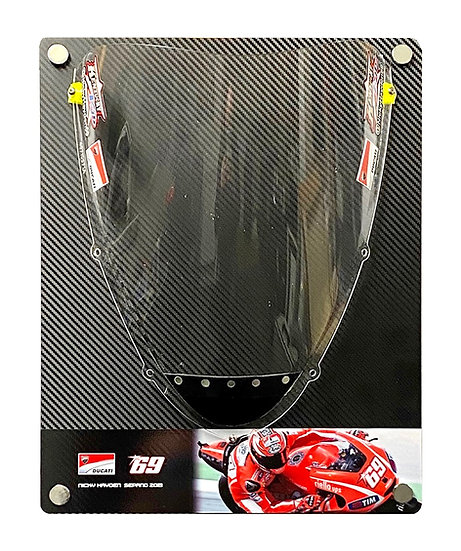 Nicky Hayden Ducati GP13 screen