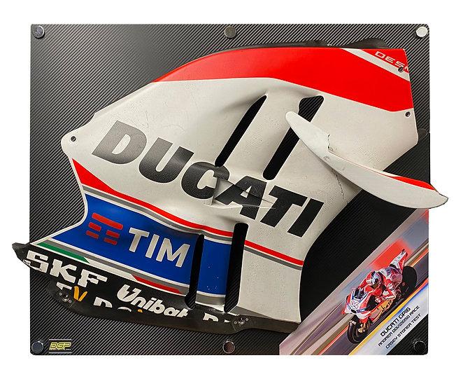 Dovizioso & Casey Stoner GP16 panel
